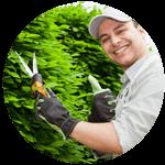 ISA Certified Arborist in Omaha NE